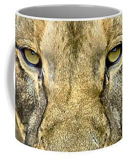 Coffee Mug featuring the photograph Lion Closeup by David Millenheft