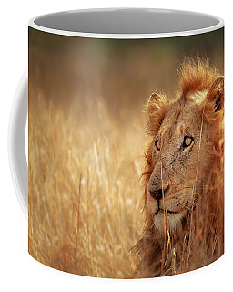 Lion In Grass Coffee Mug