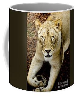 Coffee Mug featuring the photograph Lion-wildlife by David Millenheft