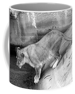 Coffee Mug featuring the photograph Lioness Black And White by Joseph Baril