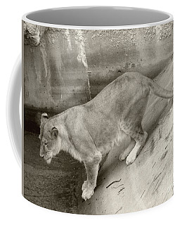 Coffee Mug featuring the photograph Lioness Sepia by Joseph Baril