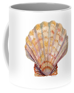 Lion's Paw Shell Coffee Mug