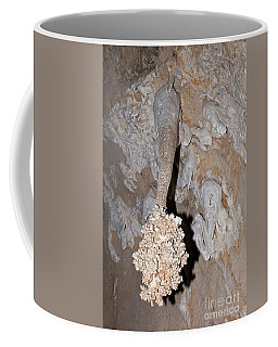 Lions Tail Carlsbad Caverns National Park Coffee Mug