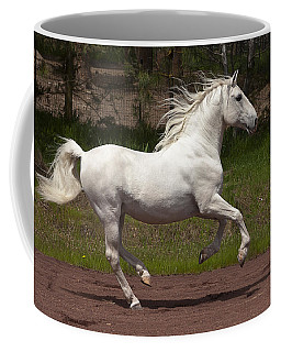 Coffee Mug featuring the photograph Lipizzan At Liberty D5809 by Wes and Dotty Weber