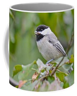 Listen To Me Coffee Mug
