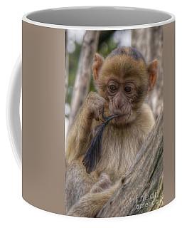 Little Barbary Monkey Coffee Mug