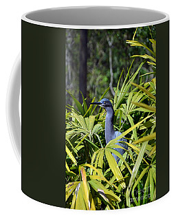 Coffee Mug featuring the photograph Little Blue Heron by Robert Meanor
