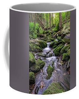 Little Bush Kill Coffee Mug