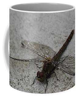 Little Dragonfly Coffee Mug