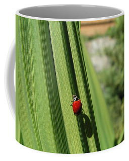 Ladybird Coffee Mug by Cheryl Hoyle