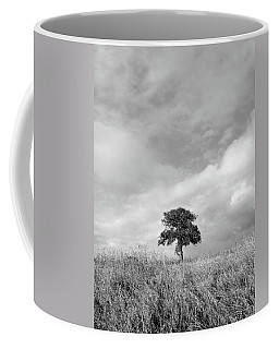 Little Lone Oak Tree Coffee Mug