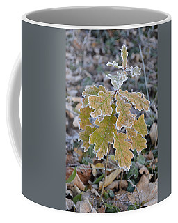 Coffee Mug featuring the photograph Little Oak by Felicia Tica