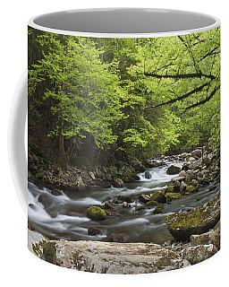 Little River Respite Coffee Mug