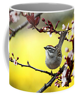 Little Sparrow Coffee Mug by Trina  Ansel