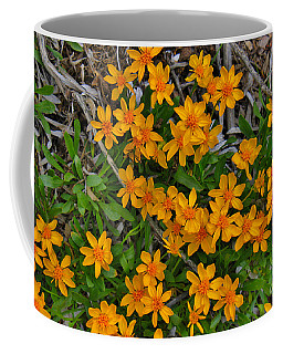Coffee Mug featuring the photograph Little Sunflower In The Mountains by Janice Rae Pariza