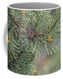 Lodge Pole Pine In The Fog Coffee Mug