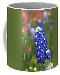 Lone Bluebonnet Coffee Mug