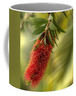 Lone Bottlebrush Coffee Mug