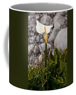 Lone Calla Lily Coffee Mug by Melinda Ledsome