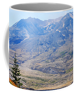 Lone Evergreen - Mount St. Helens 2012 Coffee Mug by Connie Fox