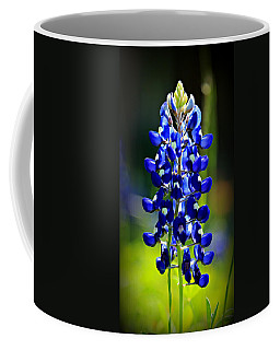 Lone Star Bluebonnet Coffee Mug by Stephen Stookey
