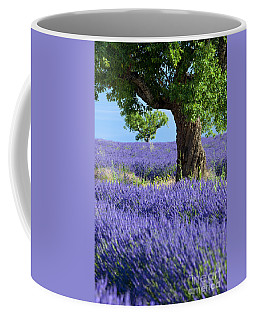 Coffee Mug featuring the photograph Lone Tree In Lavender by Brian Jannsen