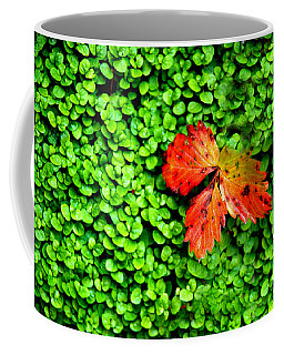 Coffee Mug featuring the photograph Lonely Leaf by Charlie and Norma Brock