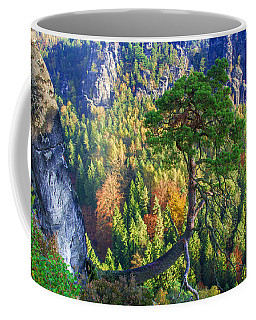 Lonely Tree In The Elbe Sandstone Mountains Coffee Mug