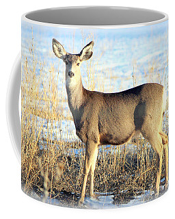 Lonesome Doe Sunset Coffee Mug