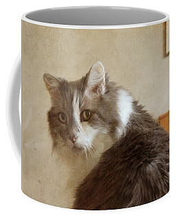 Long-haired Cat Portrait Coffee Mug