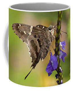 Coffee Mug featuring the photograph Long-tailed Skipper Photo by Meg Rousher