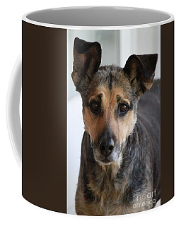 Look In To Her Big Brown Eyes Coffee Mug