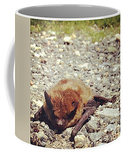 Look Who We Met Today Coffee Mug