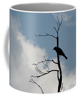 Coffee Mug featuring the photograph Looking Down On Me  by Michael Krek