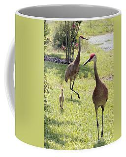 Grus Coffee Mugs