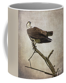 Looking For Dinner Coffee Mug