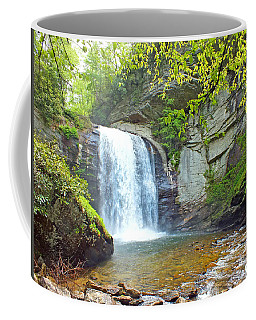 Looking Glass Waterfall In The Spring 2 Coffee Mug