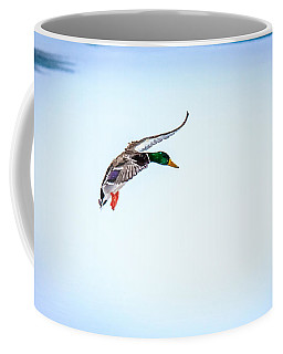 Looking To Land Coffee Mug
