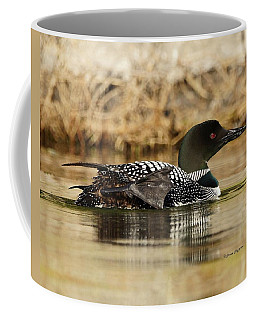 Loon 10 Coffee Mug by Steven Clipperton