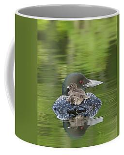 Loon Chicks -  Nap Time Coffee Mug