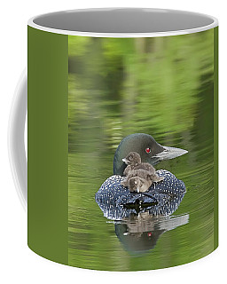 Loon Chicks -  Nap Time Coffee Mug by John Vose