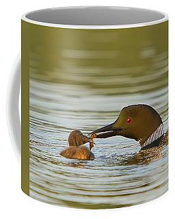 Loon Feeding Chick Coffee Mug