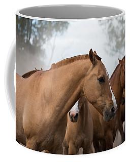 Los Caballos De La Estancia Coffee Mug