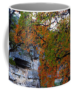 Fall Foliage At Lost Maples State Natural Area  Coffee Mug