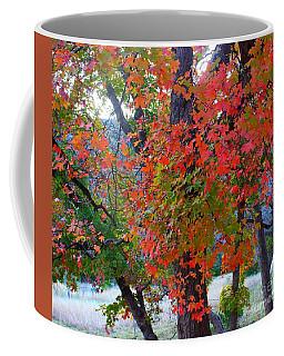 Lost Maples Fall Foliage Coffee Mug
