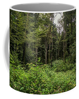 Lost My Way Coffee Mug by Michelle Meenawong