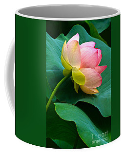 Lotus Blossom And Leaves Coffee Mug by Byron Varvarigos