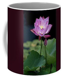 Coffee Mug featuring the photograph Lotus Blossom by Penny Lisowski