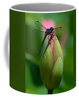 Lotus Bud And Slatey Skimmer Dragonfly Dl006 Coffee Mug