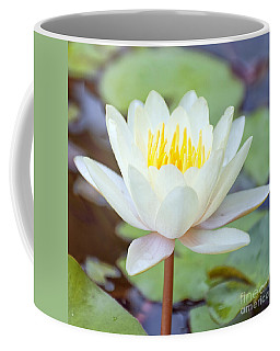 Lotus Flower 02 Coffee Mug